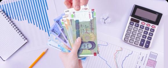 نرمافزارهای مدیریت امور مالی